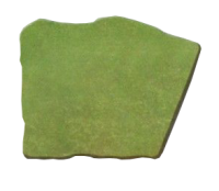 Green Lawn Stone Tone Stain