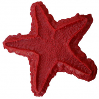 Proline Starfish Sculpted Accent